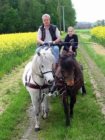 Karl-Heinz und Dany bei der Kutschausfahrt mit Asterix und Blume